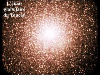 http://lancien.cowblog.fr/images/Sciences/amastoucan.jpg
