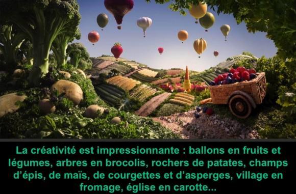 http://lancien.cowblog.fr/images/images/Diapositive15.jpg