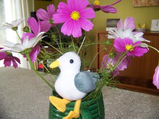 http://lancien.cowblog.fr/images/oiseaux/1002960.jpg